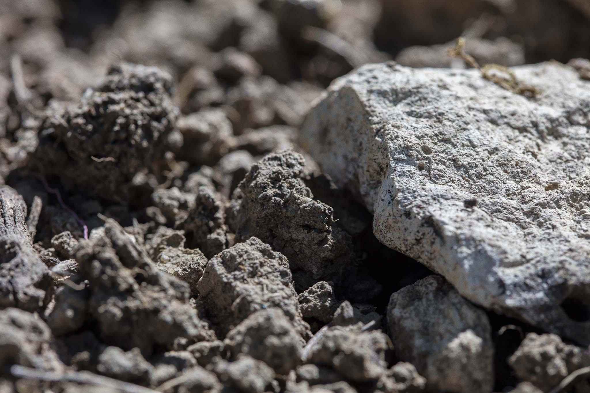 Terroir terre et pierre blanche