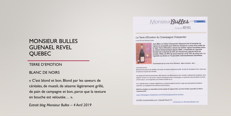 Monsieur bulles Guenael Revel Quebec